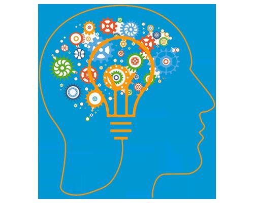 Whole Brain Marketing